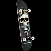 Powell Peralta Skull and Snake Complete Skateboard Gray - 7.625 x 31.625